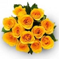 ▷ Ramo de 24 Rosas Amarillas - Kittyflor