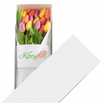 ▷ Cajas de 15 Tulipanes para Regalar | Kittyflor