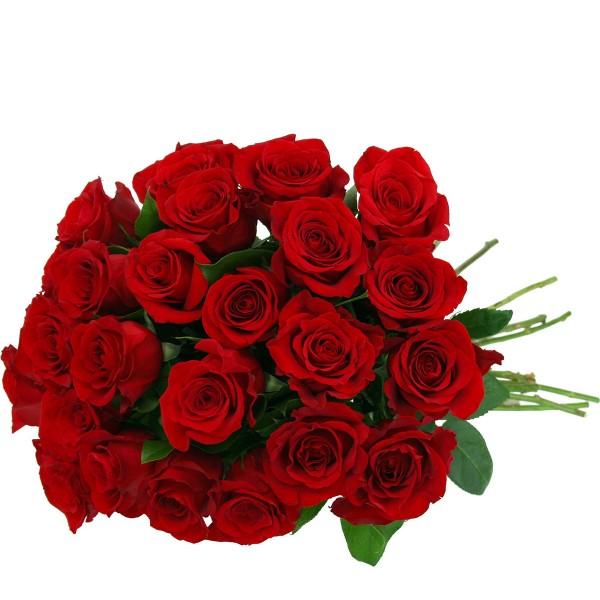 ▷ Floreria en San Miguel | 18 Rosas Rojas en Ramo