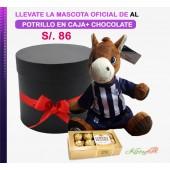 Peluche Oficial de Alianza Lima | Potrillo con Bombones de Chocolate en Elegante Box Negro