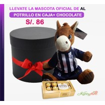 Peluche Oficial de Alianza Lima   Potrillo con Bombones de Chocolate en Elegante Box Negro