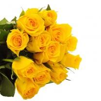 ▷ Rosas Amarillas - Ramo de 12 Tallos