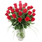 Rosas Rojas en Florero | 24 Tallos